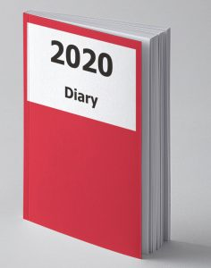 Image of 2020 Large Print Red Diary